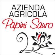 AZIENDA AGRICOLA PAPINI SAURO